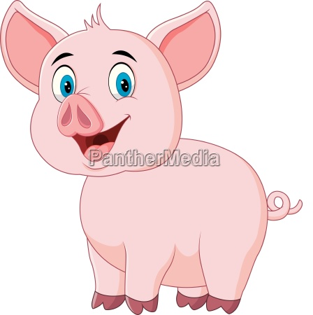 cute pig posing isolated on white