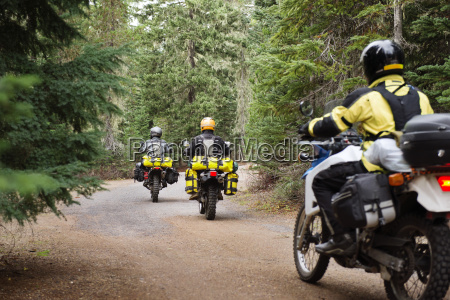 rear view of men riding motorcycles