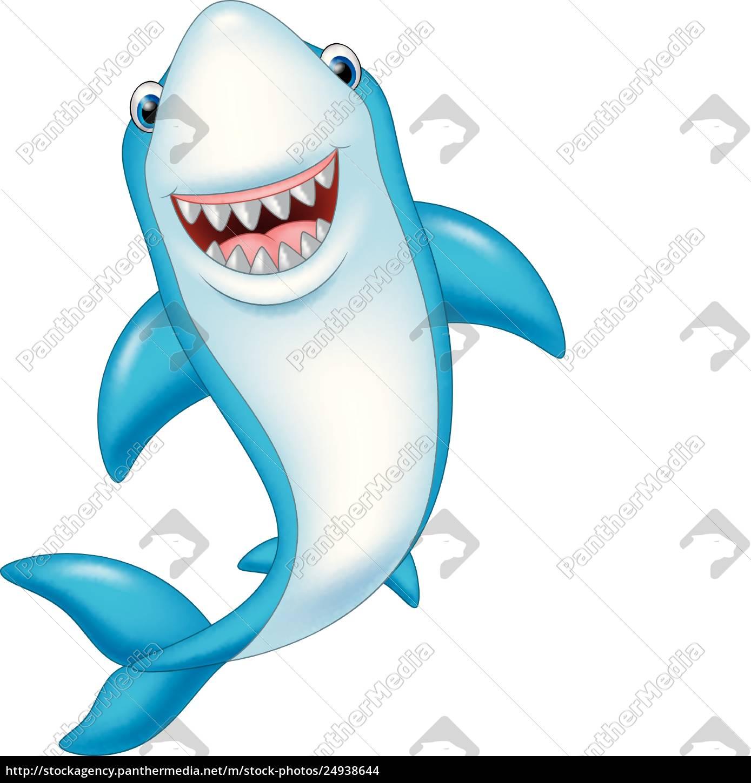 cartoon, funny, shark, isolated, on, white - 24938644 ...