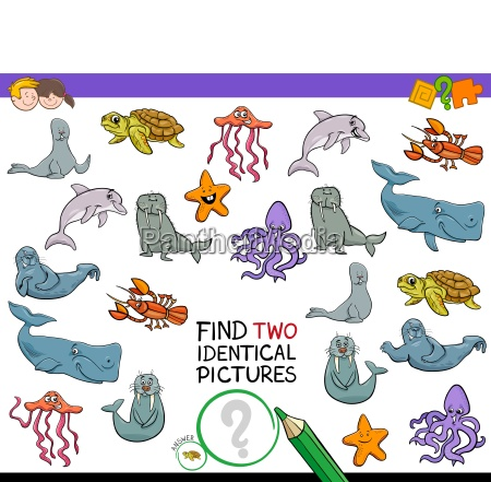 find two identical sea animals game