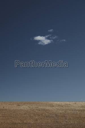 agricultural landscape against blue sky