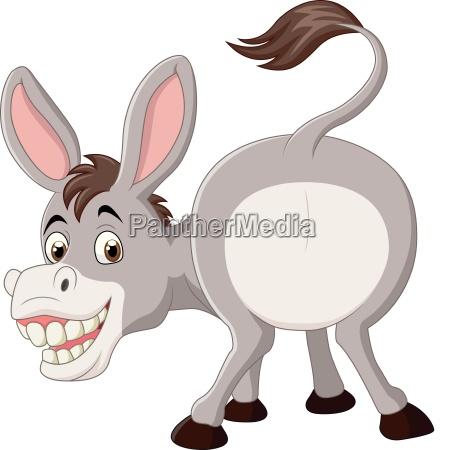 cartoon funny donkey mascot