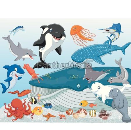 cartoon sea animals