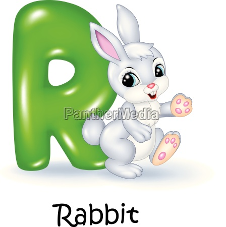illustration of r letter for rabbit