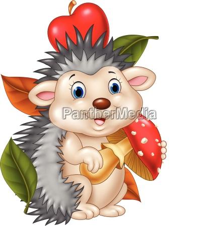 cute baby hedgehog isolated on apple