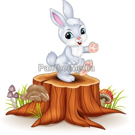 cute bunny standing on tree stump