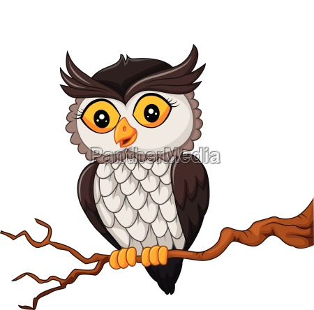 cartoon owl bird posing on the