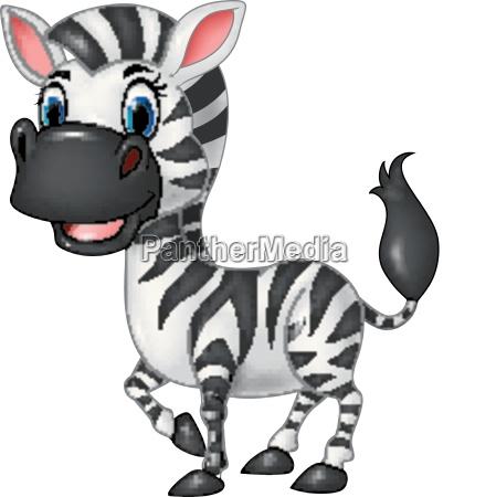 cartoon funny zebra posing isolated on