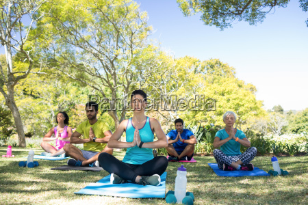group of people performing yoga in