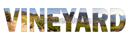 written vineyard with background a hilly