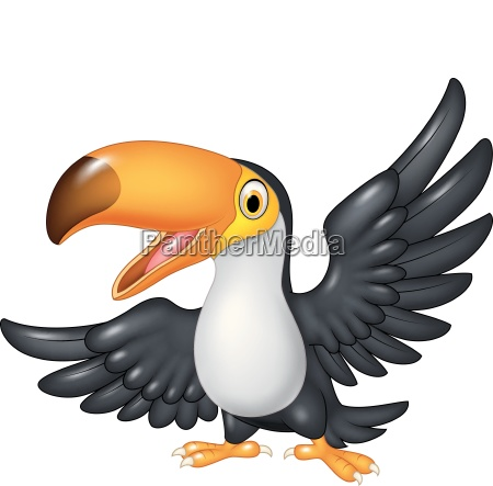 cartoon funny toucan isolated on white