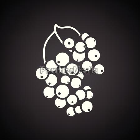black currant icon