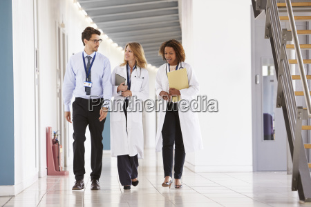 three young male and female doctors