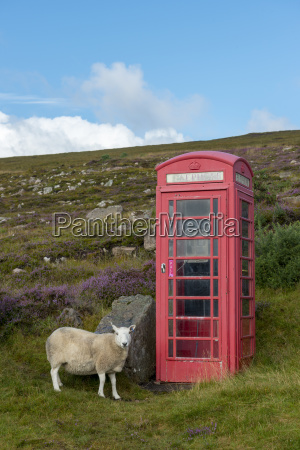united kingdom scotland highland telephone booth