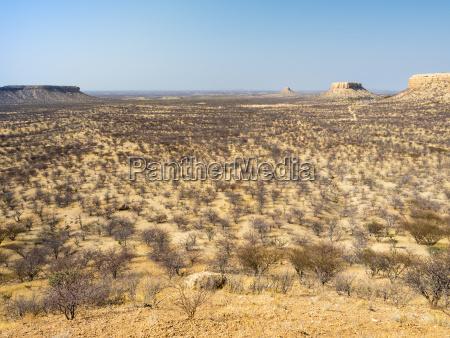 africa namibia damaraland scrubland
