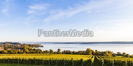 germany baden wuerttemberg panoramic view of