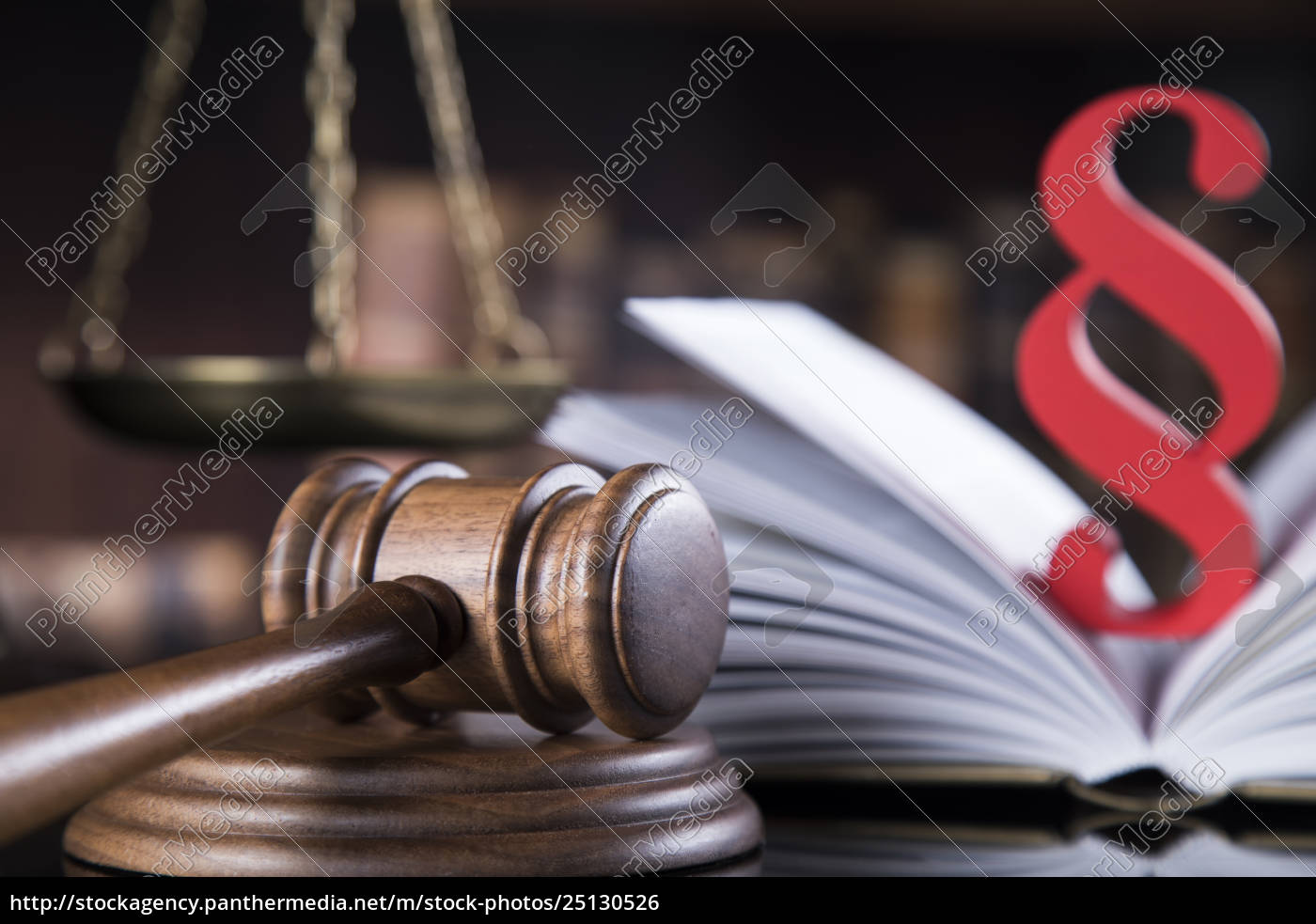 book, , law, theme, , mallet, of, judge, - 25130526
