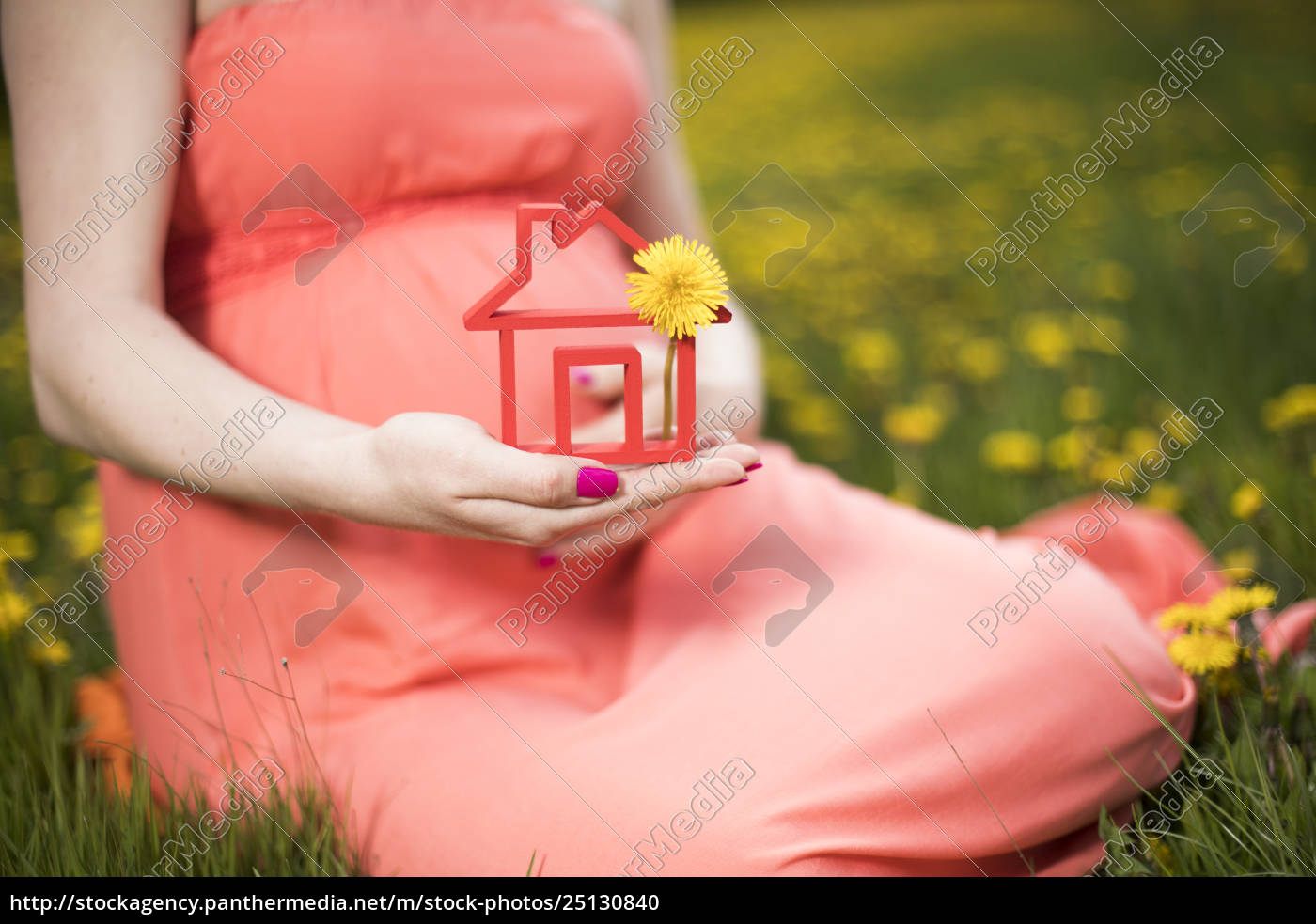 home, , meadow, , spring, , young, beautiful, pregnant - 25130840