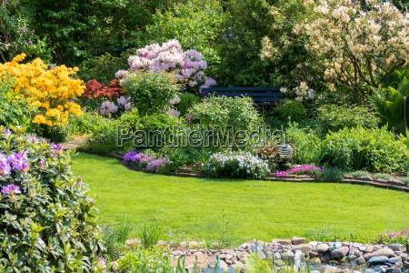 beautiful garden in the summer