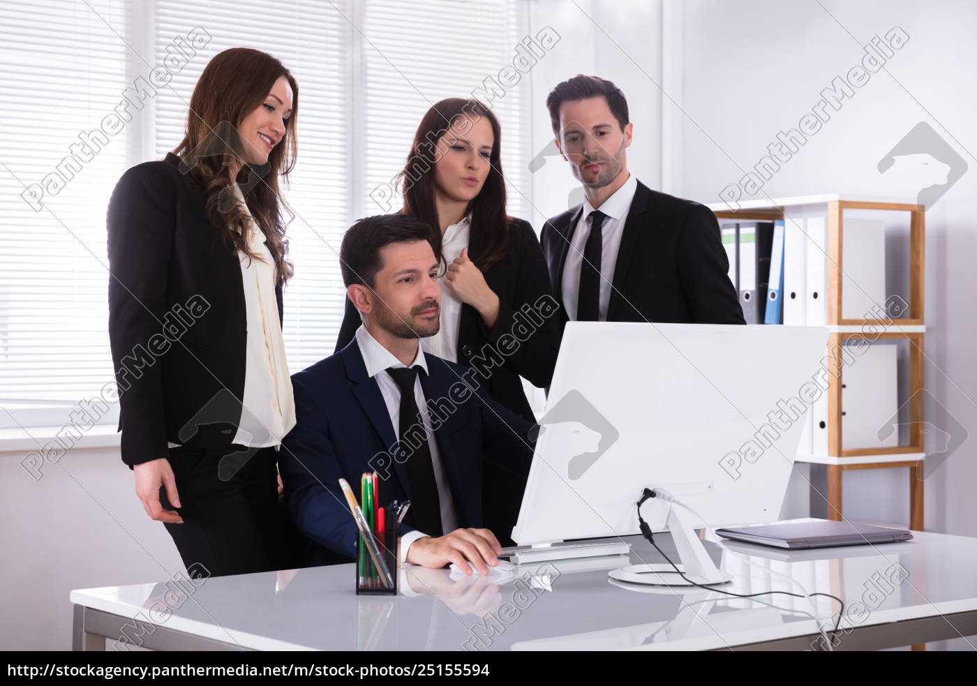 businesspeople, looking, at, computer, screen - 25155594