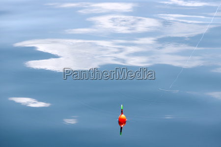 fishing float on the surface of
