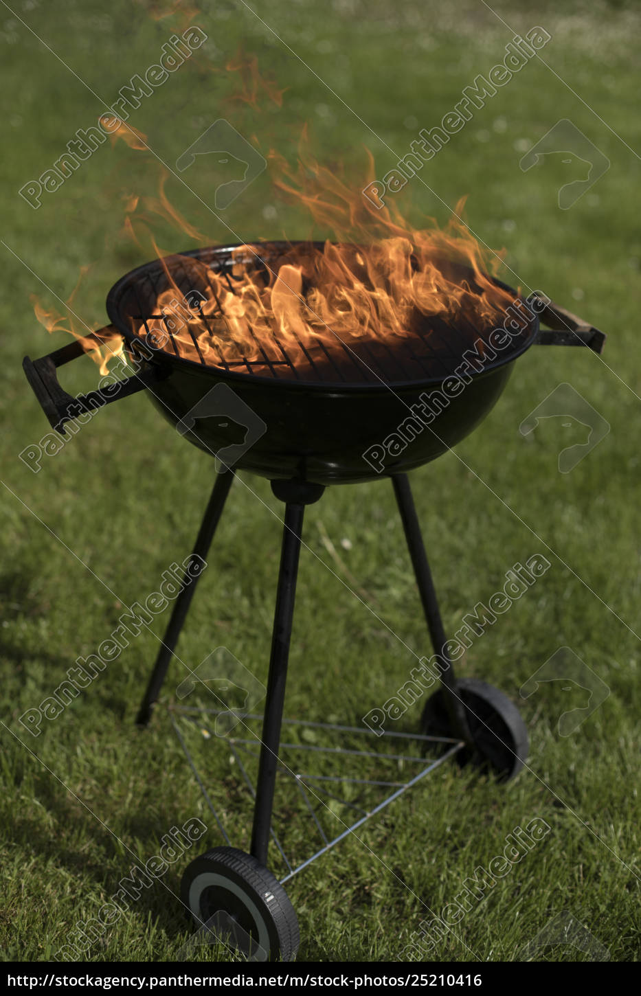 barbecue, grill, with, fire, on, nature, - 25210416