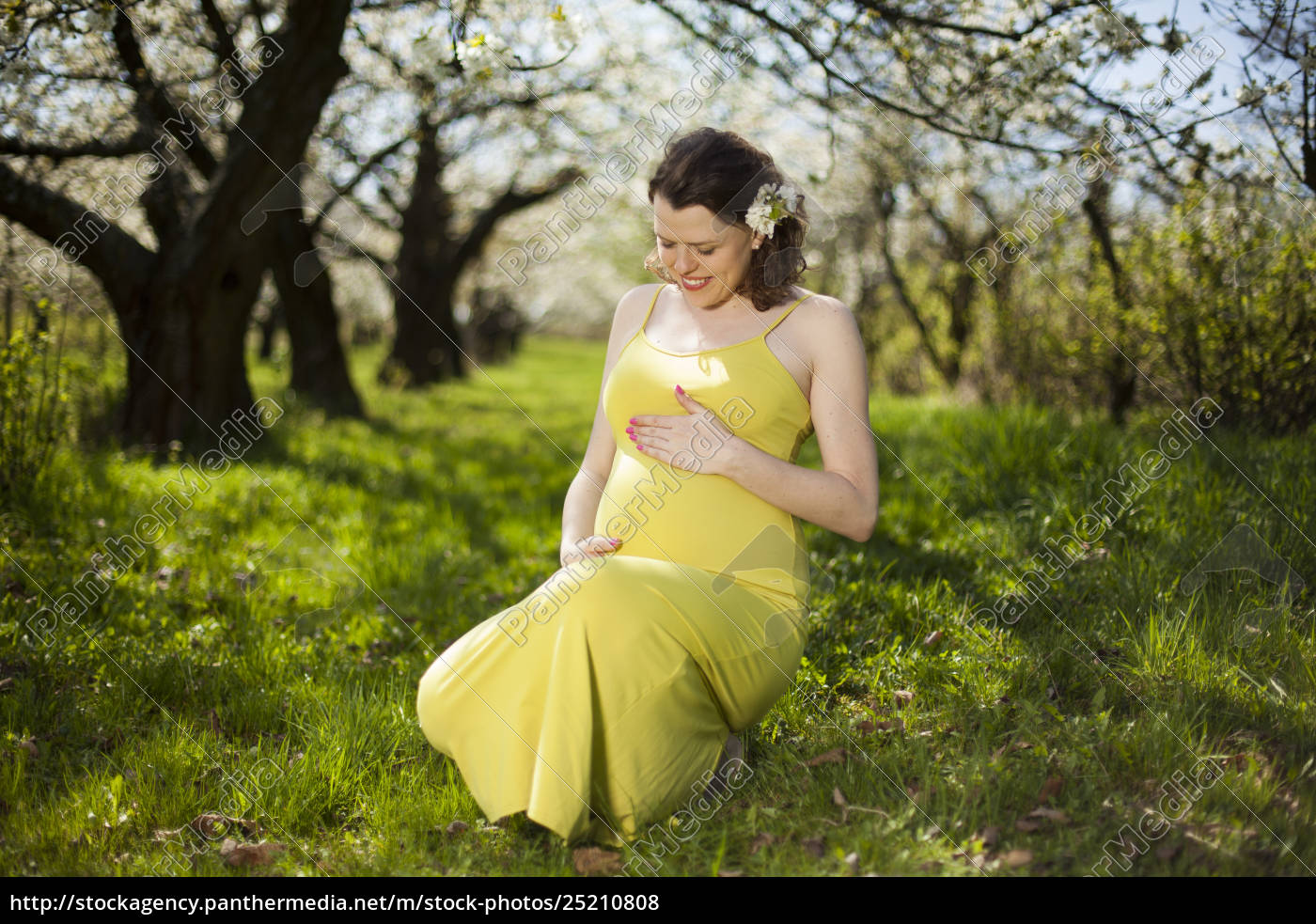 blooming, garden, , beautiful, pregnant, woman - 25210808