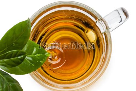 cup, of, tea - 25231922