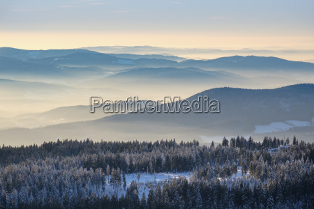 talnebel view from the grosser arber