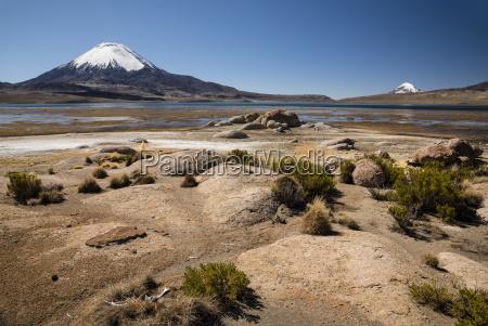 parinacota, volcano, (6348m), lago, chungará, lake, lauca, national - 25256718