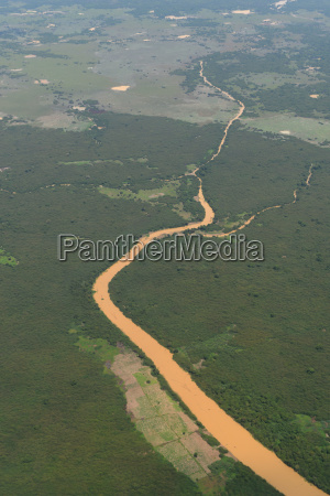 cambodia siem reap landscape ricefield
