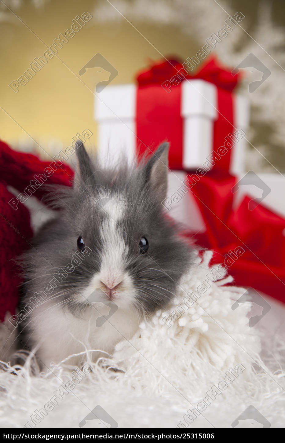 christmas, bunny, , santa, baby, red, hat - 25315006
