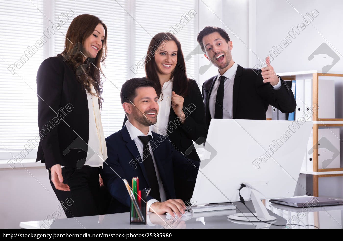 businesspeople, looking, at, computer, screen - 25335980