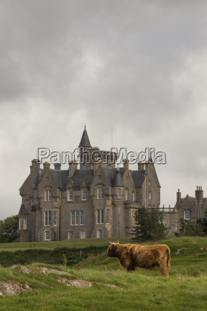 large house and highland cattle in