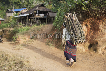 a loi woman carries wood for