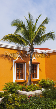 bright orange house with a palm