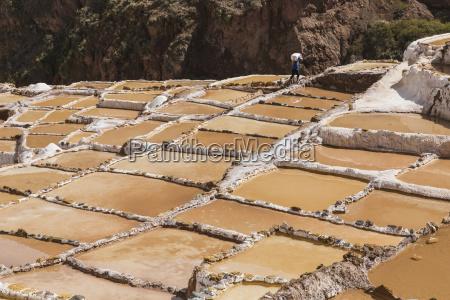 family owned salt ponds in sacred