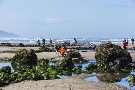 tourists walking among the tide pools