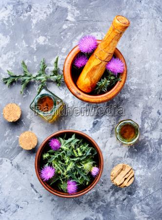 natural, herbs, medicine - 25411782