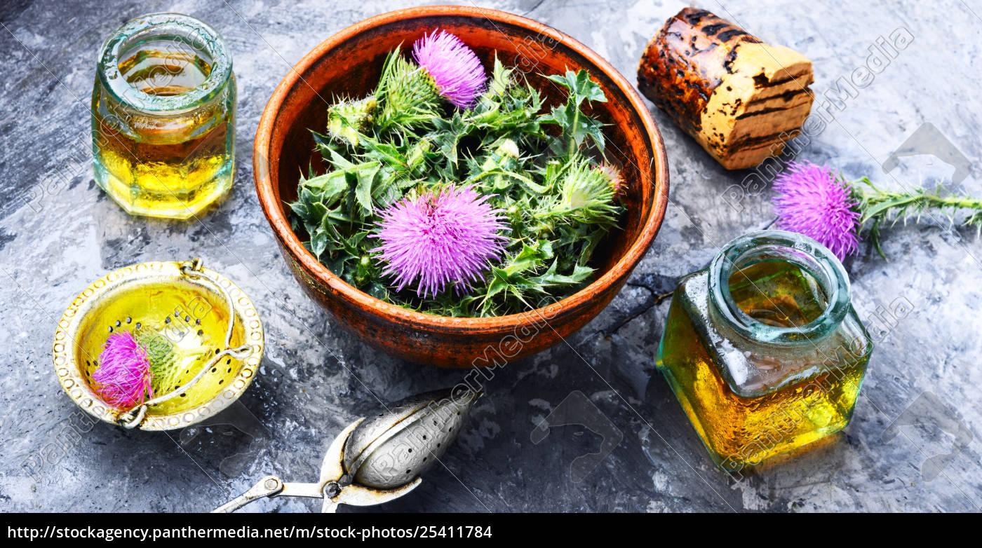 natural, herbs, medicine - 25411784