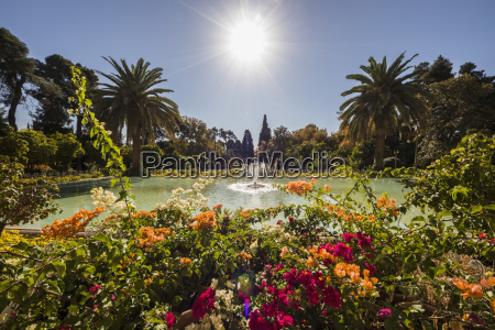 fountain in the ornamental pool of