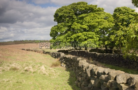 rustic stone fence north yorkshire england