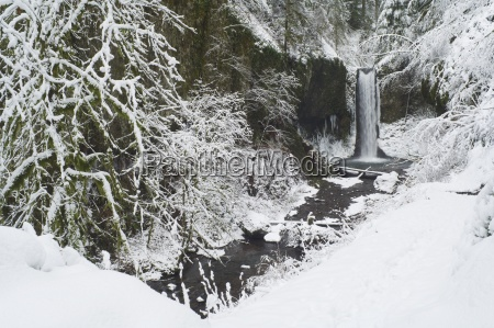 weisendanger falls in winter columbia river