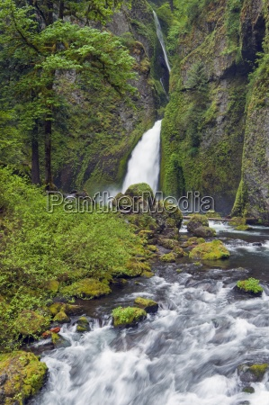 wahclella falls and tanner creek columbia