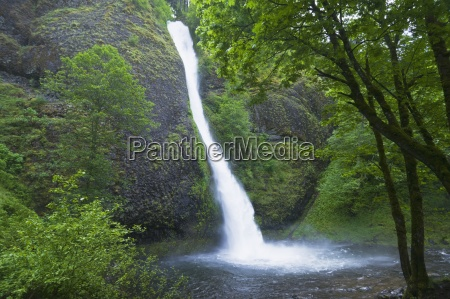 horsetail falls columbia river gorge oregon