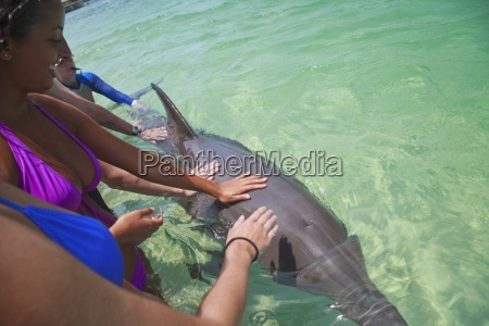 roatan bay islands honduras tourists touching