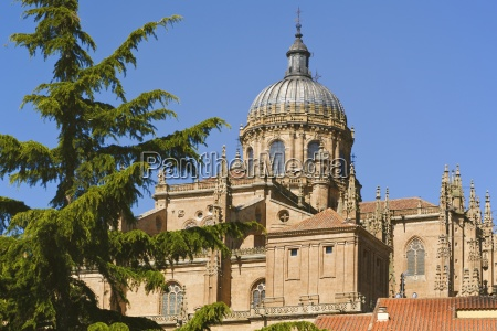 old cathedral and dome seen from
