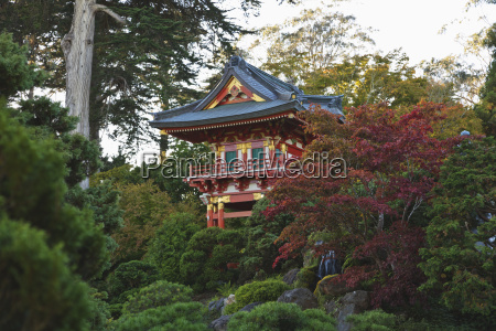 japanese tea garden in golden gate