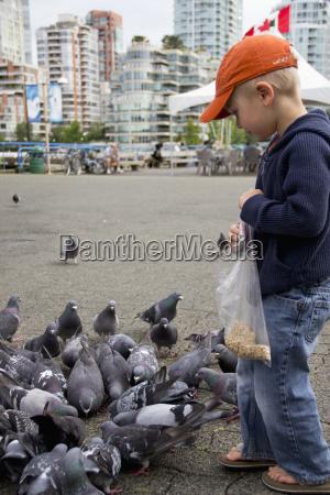 a young boy feeding the birds