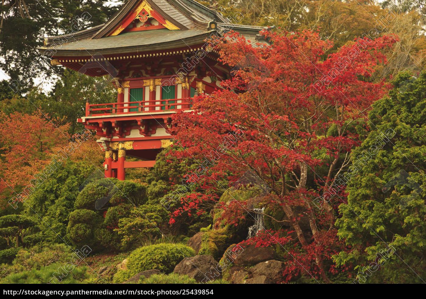 Japanese Tea Garden In Golden Gate Park; San Francisco - Rights ...